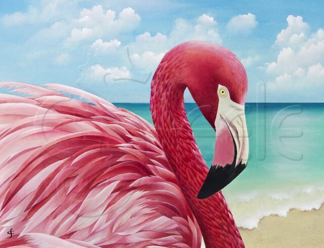 "Matted tropical art print by Carolyn Steele - flamingo on beach:""Pretty In Pink"""