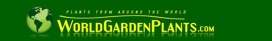 worldgardenplants