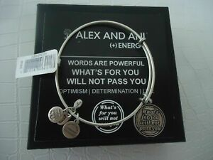 290311e1bfa8c Alex and Ani What's for You Will Not Pass You Charm Bangle Bracelet  A12eb35rs