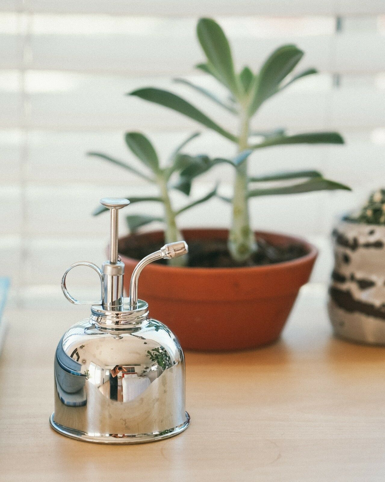 Nickel Plant Mister - Ideal for Tropical Houseplants and Indoor Plants