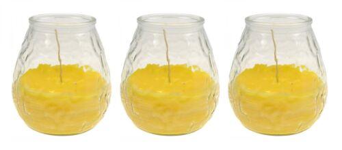 Anti-Insekten-Kerzen im dekorativen Glas Citronella Kerzen gegen Mücken 3er Set