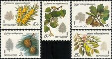 Russia 1980 Cedar/Oak/Ash/Lime/Trees/Plants/Nature/Environment 5v set (n45035)