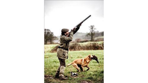 GUN /& gioco biglietti d/'auguri Caccia Tiro cani da caccia