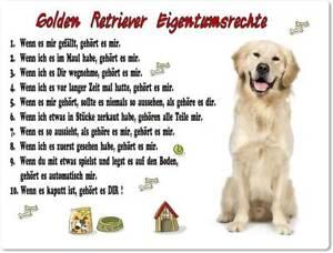 Warnschild 20x30cm Lustige Eigentumsrechte Golden Retriever 01 Ebay