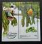 SJ-Malaysia-Medicinal-Plants-IV-2018-Fruits-Food-Vegetables-Flower-ms-MNH thumbnail 1