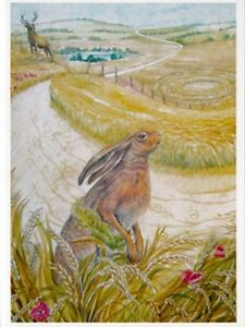 Pagan wiccan greeting cards harvest hare wendy andrew goddess nature image is loading pagan wiccan greeting cards harvest hare wendy andrew m4hsunfo