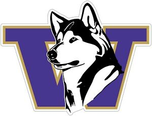 Washington-Huskies-Color-Vinyl-Decal-Sticker-You-Choose-Size-2-034-38-034