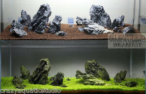 Image Is Loading Aquascaping ADA Seiryu Stone Rock Aquarium Tropical Fish