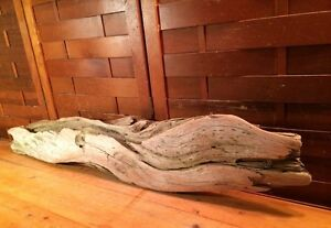 "Beautiful 38"" Driftwood Terrarium Reptile Taxidermy Aquarium Wood Art Decor"