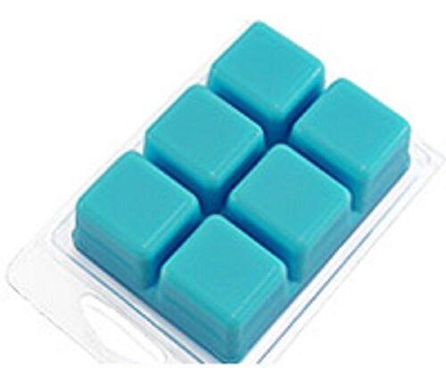 breakaway WAX TARTS SMELTERS MELTS 100 CLAMSHELL tart mold WAFFLES
