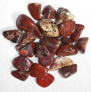 500 Cts Bulk Tumbled White Dalmation Jasper Stones mineral 1//4 lb