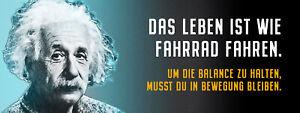 Albert Einstein Collage Saying 28 Tin Sign Shield 10 X 27 CM K1586