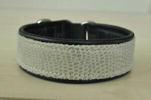 Hundehalsband-echt-Leder-Umfang-32-cm-Klickverschluss-SONDERPREIS