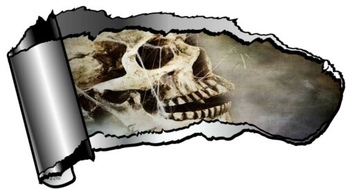 Ripped Open GASH Rip Torn Metal /& Creepy Skull With Cobweb Car Sticker Decal