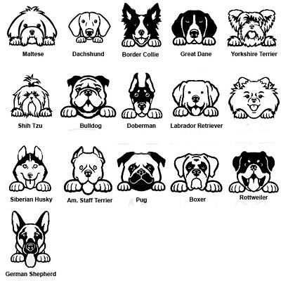 Dog Breed decals//Stickers w//FAST Free Shipping Multiple colors available!!