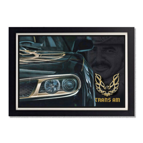 Burt Reynolds Smokey and the Bandit Trans Am Glossy Poster 11x17in 24x36in