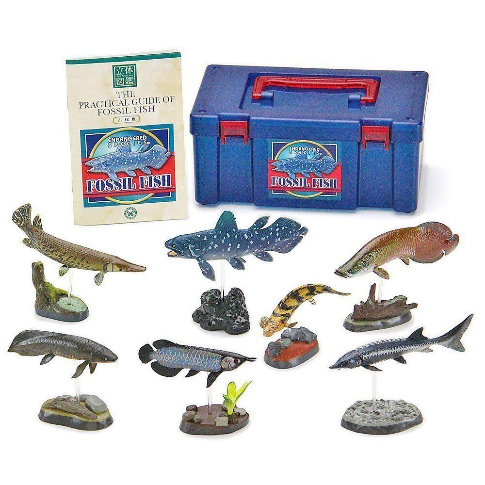 Couleurata 3d Vrai Figurine Boîte  Endangerouge Species Fossil Poisson Articulée  expédition rapide dans le monde entier