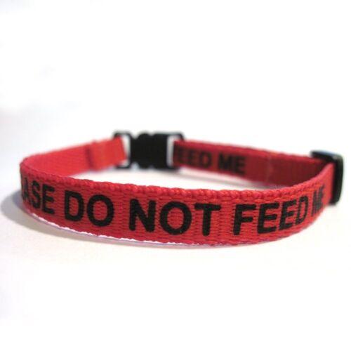 """Collar del gato /""""por favor no me alimentan/"""" Rojo envío rápido servicio de primera calidad"""