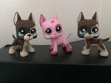 3 Littlest Pet Shop GREAT DANE Dogs #817 #817-2 Brown & #2598 Pink USA Seller