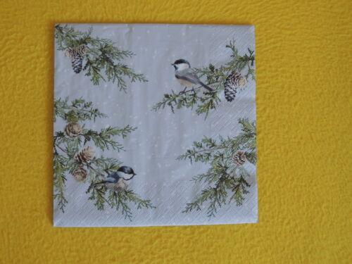 5 Servietten Vögel Äste Winter Tannen Zapfen Weihnachten Serviettentechnik 1//4