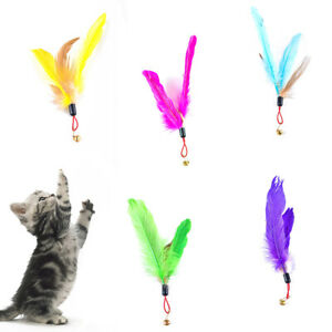 Sn-Animale-Domestico-Gatti-Giocando-Bastone-Piuma-Bell-Ricambio-Testa-Grattare