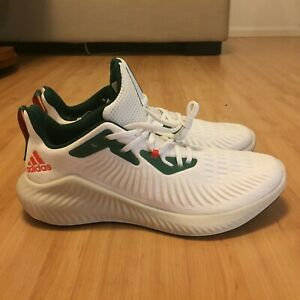 Miami Hurricanes Shoe Gators Green