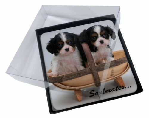 4x King Charles Puppies 'Soulmates' Picture Table Coasters Set in Gift, SOUL55C