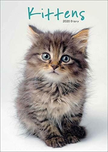 Kittens A5 Diary 2020 NEW