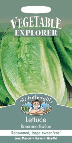 Mr Fothergills Lettuce Romaine Ballon Seed