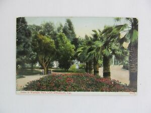 Vintage-Postcard-Scene-in-Wstlake-Park-Los-Angeles-California-Palm-Tree-Flowers