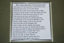 Per amanti dei cani Sottobicchieri-descrivono un amico - 10% regalo al Border Collie fiducia GB