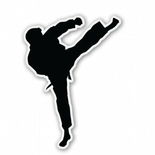 SELECT SIZE Karate Car Vinyl Sticker