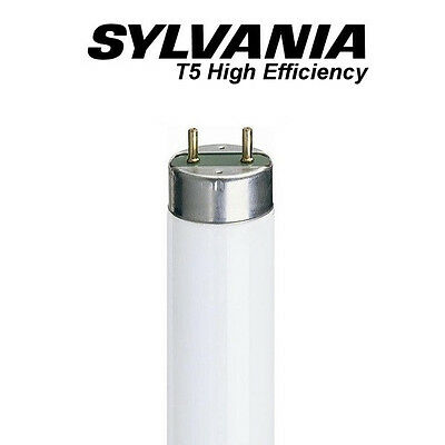 """Base 3,500K  Fluorescent SLI F58T8//835 58 watt 60/"""" T8 Medium Bi-Pin G13"""