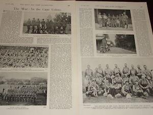 Art Prints Painstaking 1900 Boer War Gatacres Scouts Wynberg Officers Methuen To Help Digest Greasy Food