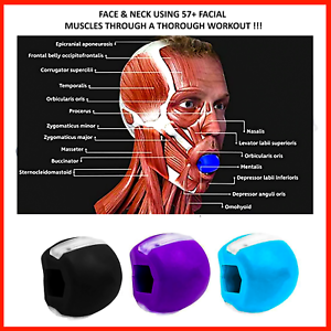 Face Fitness BallFacial Toner ExerciserJawline Exercise Ball