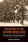 Palestine in the Second World War: Strategic Plans & Political Dilemmas -- the Emergence of a New Middle East by Daphna Sharfman (Paperback, 2014)