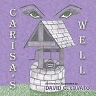 Carisa's Well by David C. Lovato (Paperback, 2014)