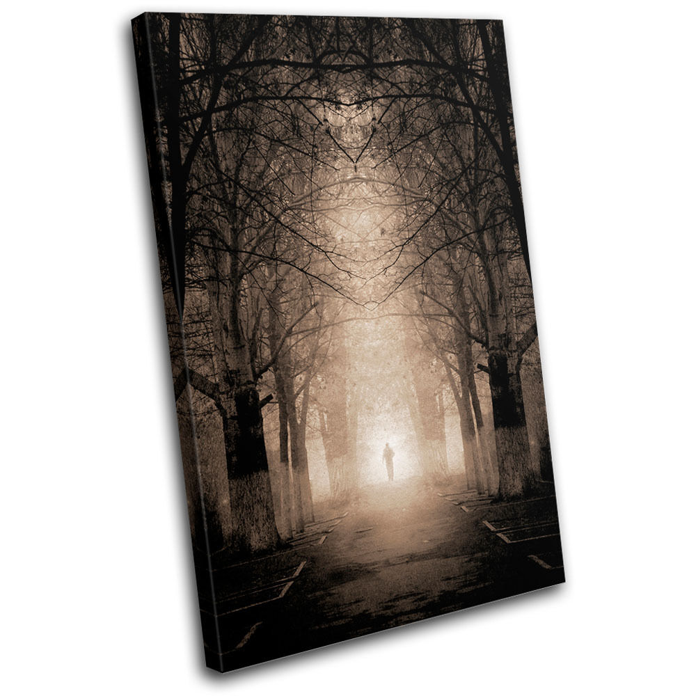 Haunted Venue Landscapes SINGLE TOILE murale ART Photo Print
