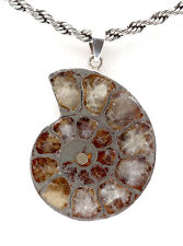 Hematite Ammonite Sterling Silver Fossil Pendant Jewlery Necklace Crystal Gemsto