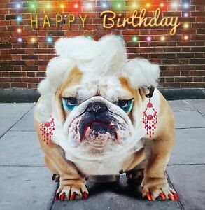 Image Is Loading Bulldog Birthday Card Feeling Fabulous Funny Dog Lovers