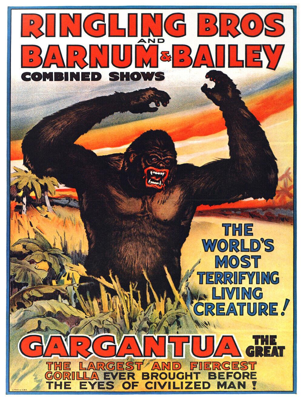 7786.Decoration Poster.Home Room wall interior art design.Gargantua big gorilla