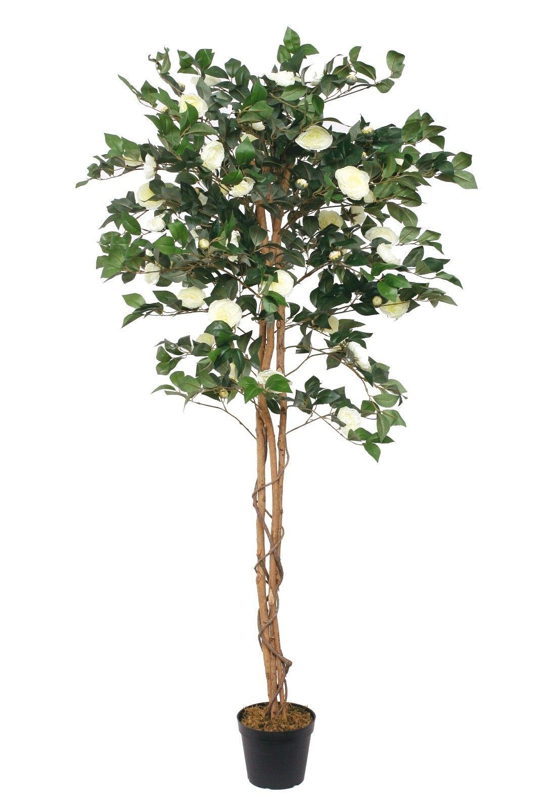 Camellia Japonica weiß Kunstbaum Kunstpflanze künstliche Pflanze 170 cm McPalms