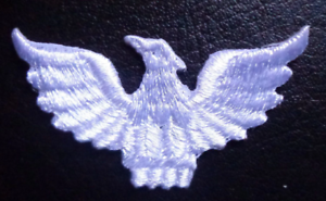 IRON ON PATCH APPLIQUE EAGLE white color