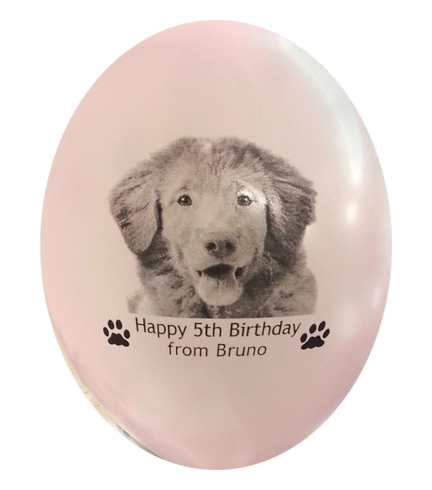 Haustier Luftballons Hunde Foto Geburtstag Geschenk Personalisiert 15 mit Bild | Elegante Form  | Züchtungen Eingeführt Werden Eine Nach Der Anderen