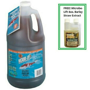 Microbe-Lift-PL-1-Gallon-Koi-Pond-Clarifier-10PLG4-FREE-Barley-Straw-Extract