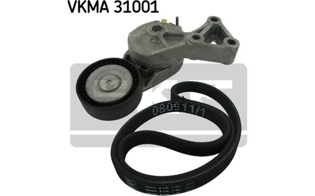 SKF Juego de correas trapeciales poli V VOLKSWAGEN GOLF SEAT LEON VKMA 31001