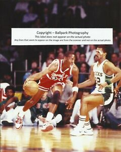 buy online 55f9f df920 Details about Michael Jordan Chicago Bulls 6 x NBA Champion Finals MVP  All-Star 8x10 Photo