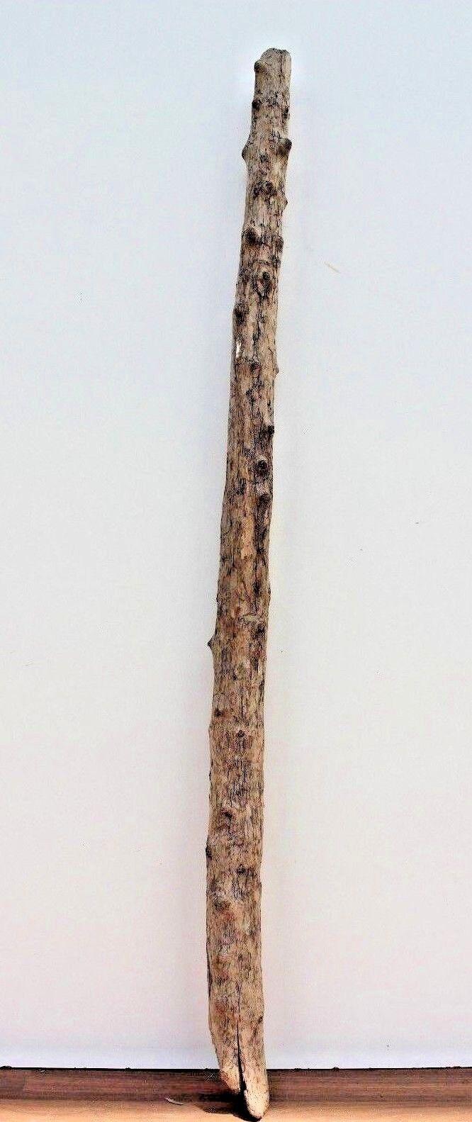 Schwemmholz Treibholz Driftwood 1 Xl Ast Holz Dekoration Basteln Diy