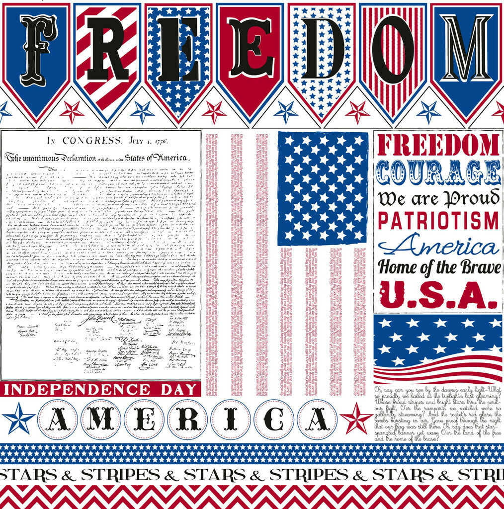 "12/"" Scrapbook Paper 4th July Picnic family reunion Military Philadelphia 5 sheet"