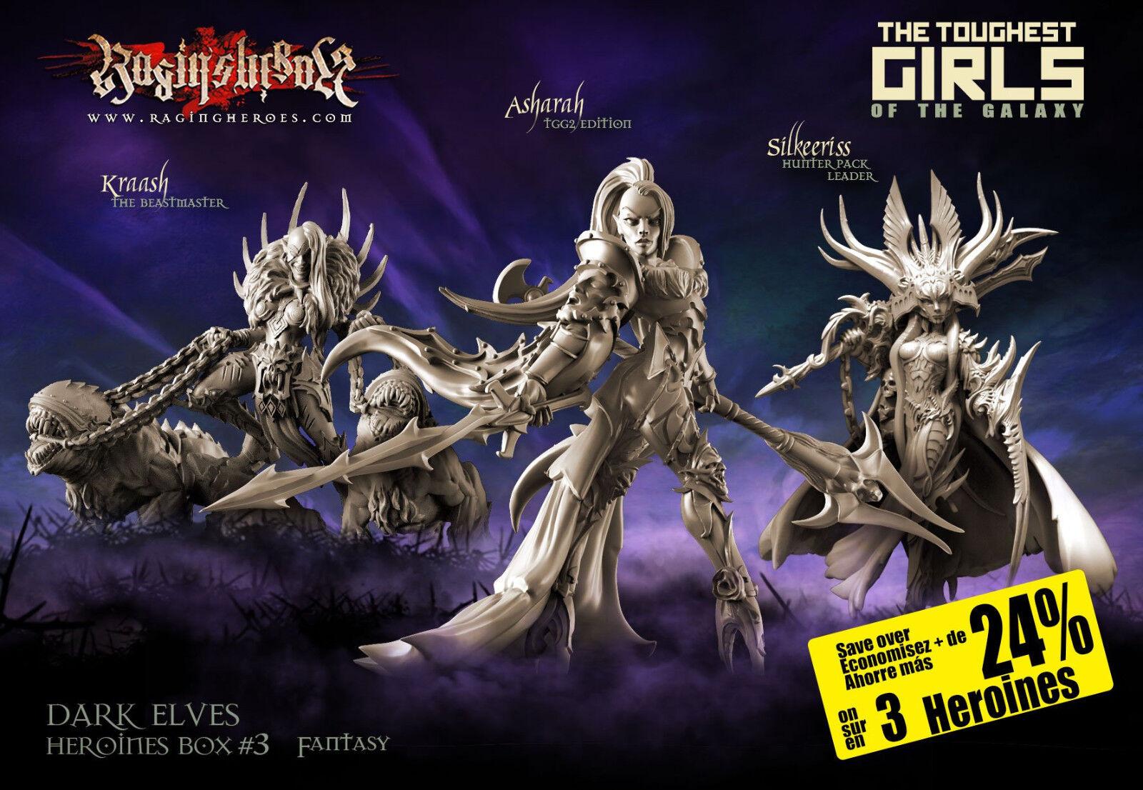 Raging Heroes Dark Elves Heroines Box 3 Female Dark Elves 28mm